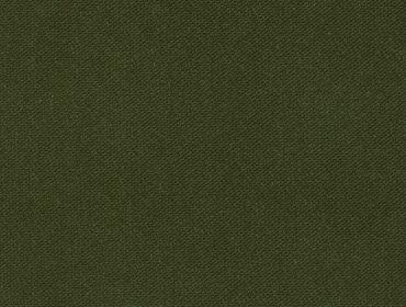 22 Verde Oliva